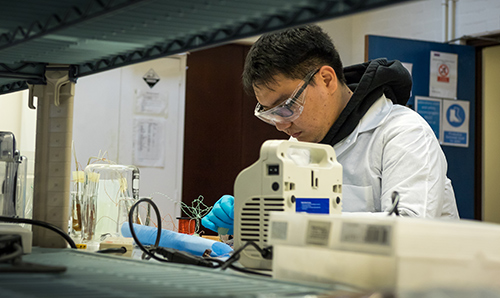 A male researcher in the dielectric lab